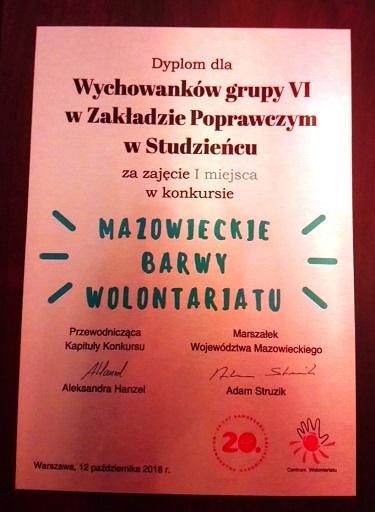 MAZOWIECKIE BARWY WOLONTARIATU