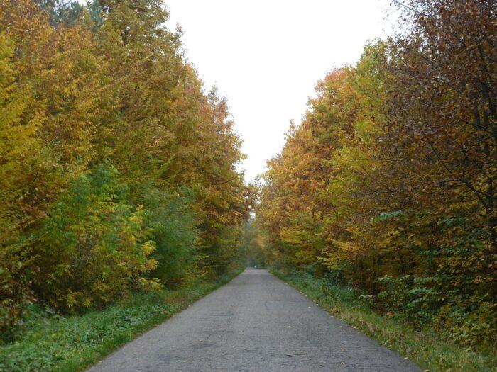 Jesień w Studzieńcu